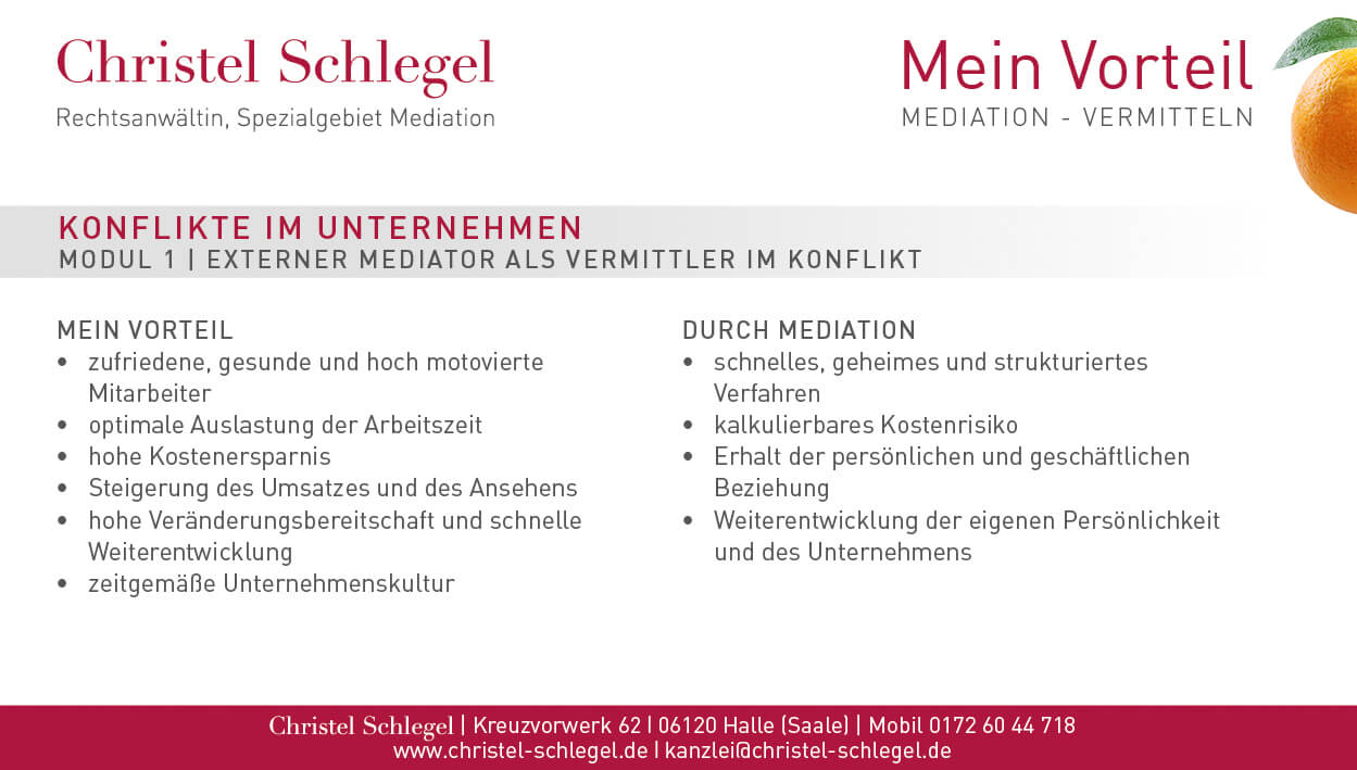 Christel Schlegel Mediation PDF Seite 3